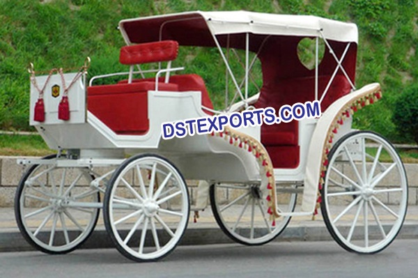 Indian Wedding Horse Buuggys Carriages Chariots